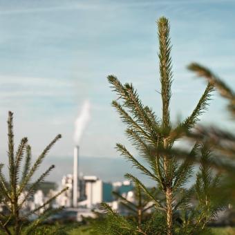 环境和可持续发展
