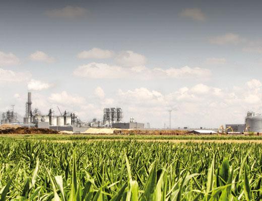 Panorama_view_plant_Radauti_1_520x400px.jpg