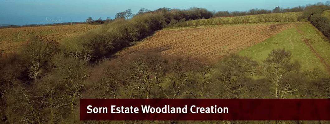 EGGER Woodlands Creation – Case Study – Sorn Estate, East Ayrshire