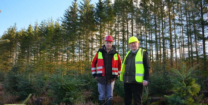 Forestry company helps owner secure planting scheme in national park