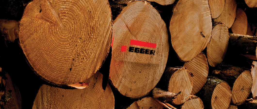 Achiziții de material lemnos