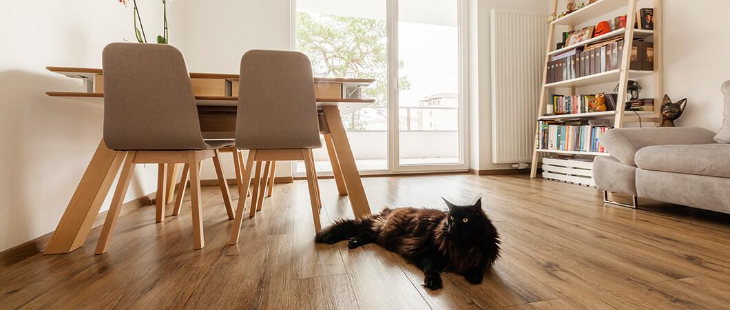 Las mascotas no son un problema para este robusto suelo laminado.