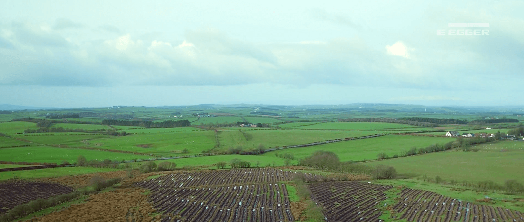 Timber Harvesting Case Study - Sorn Estate