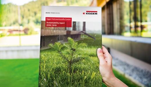 Отчет компании ЭГГЕР по устойчивому развитию