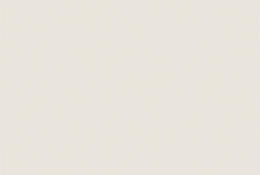 U775 White Grey