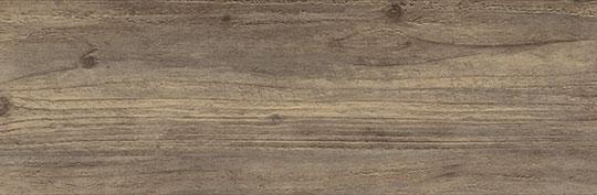 EHD026 Dark Carpio Pine