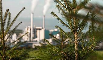 Webinar-Rückblick: Umwelt und Nachhaltigkeit – Transparenz bei EGGER