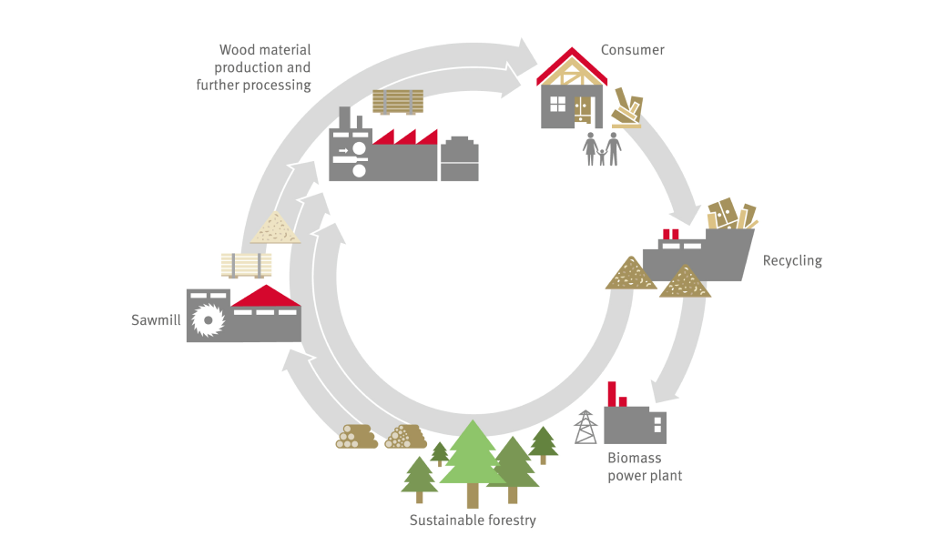Ecological Cycle: Overview from tree to product