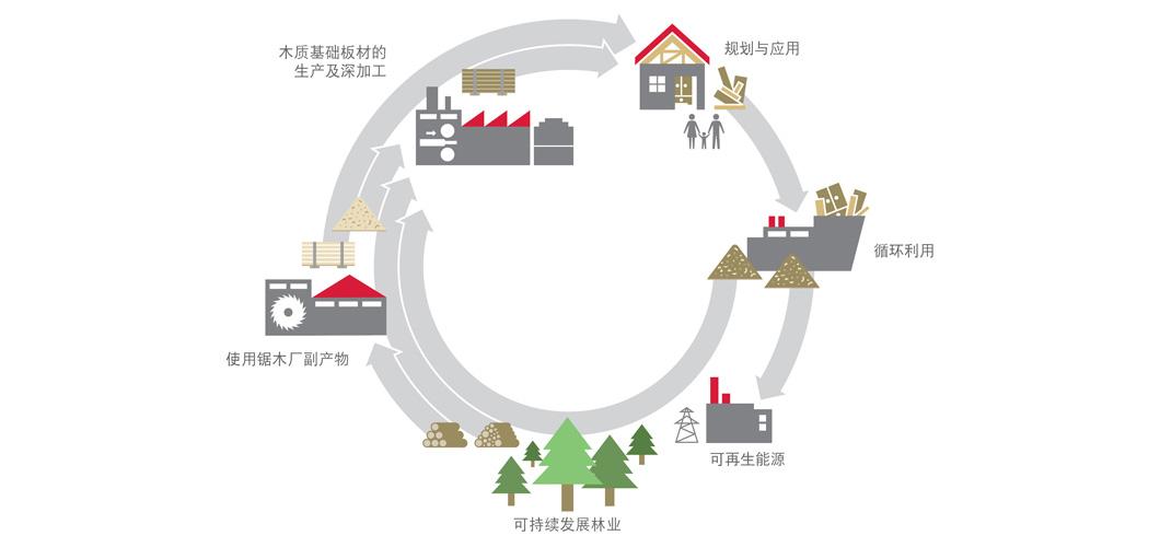 从树木到产品 - 闭合的循环。