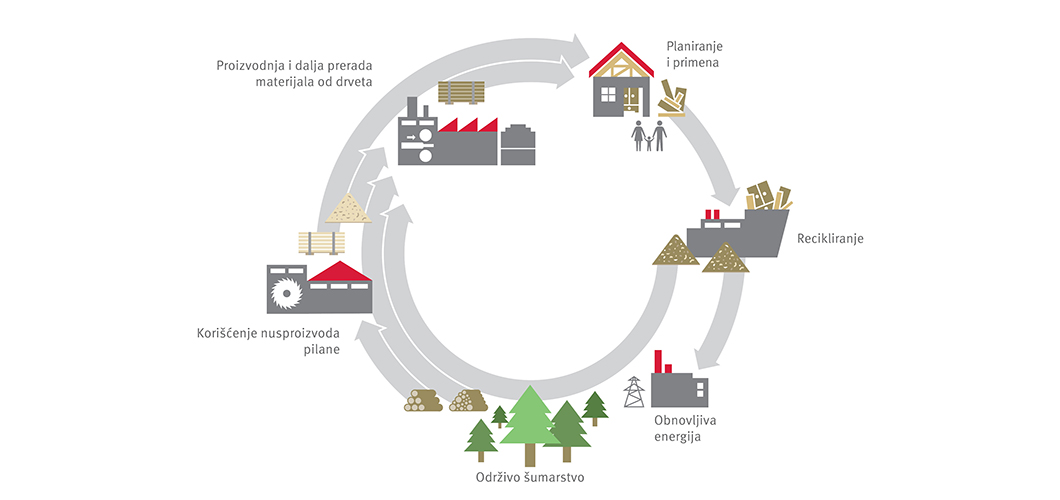 Ekološki ciklus