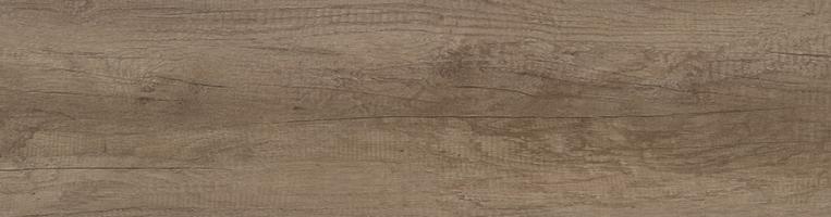 H3332 ST10 Grey Nebraska Oak